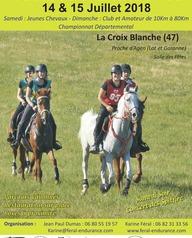 Course d'endurance Equestre