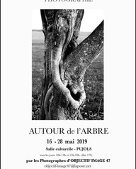"""Exposition """"Autour de l'arbre"""" - Objectif images"""