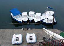 Base nautique de l'aviron - Villeneuve-sur-Lot