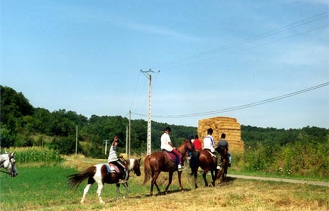 Ferme Equestre Crinière au Vent 1 - Monbalen