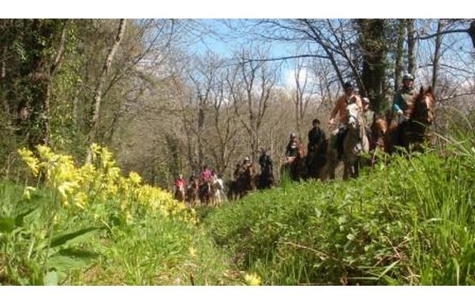 Ferme équestre La Gravade 2 - Sainte-Livrade-sur-Lot