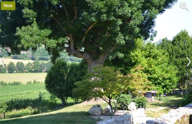 La Grange de Gazelle 4 - Saint-Antoine-de-Ficalba